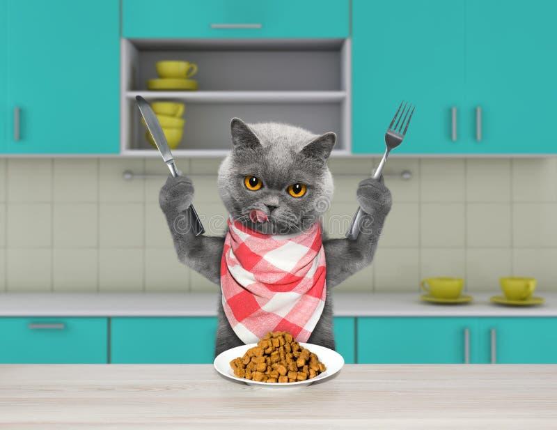 Голодный кот с ножом и вилка для обедающего сидя на таблице и идя съесть сухую еду стоковое фото rf