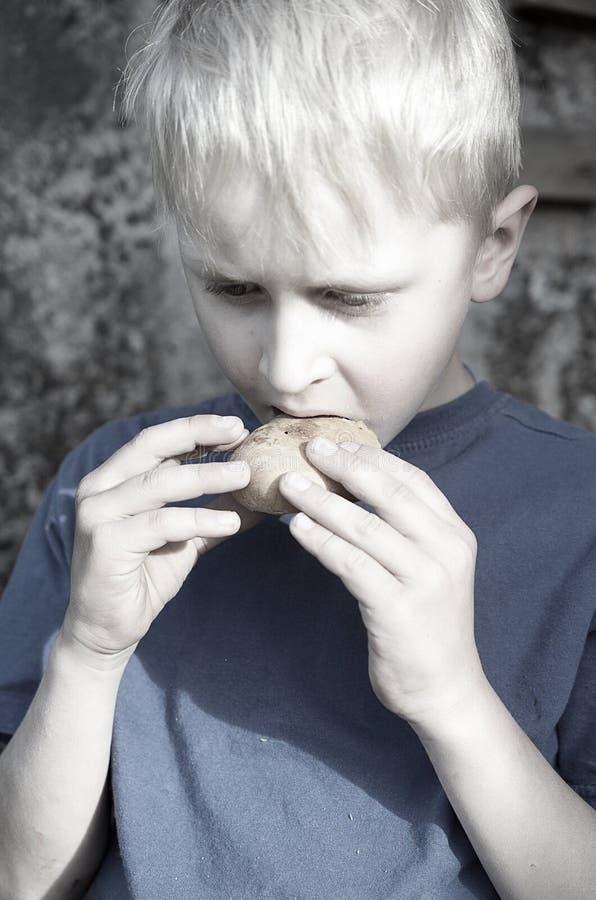 Голодный пакостный мальчик жадно ест корку хлеба против стены тонизировать стоковое фото