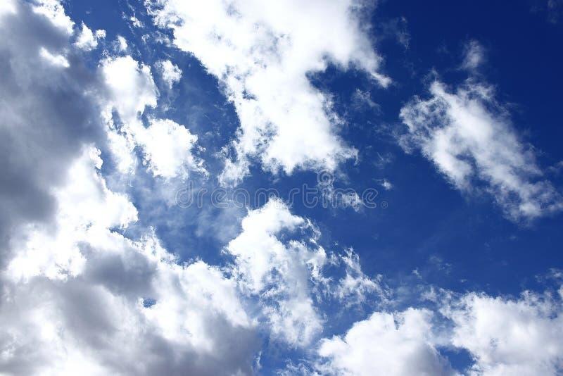 голубая белизна стоковая фотография rf