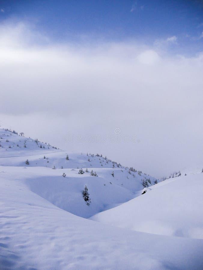 голубая гора стоковые фото