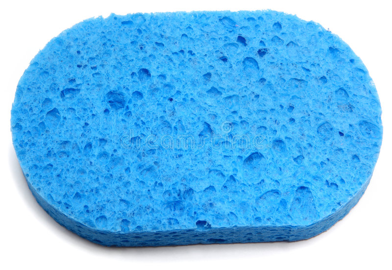 голубая губка стоковое фото