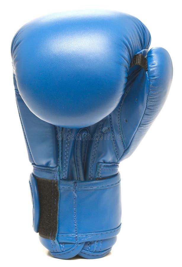 Голубая кладя в коробку перчатка стоковые фото