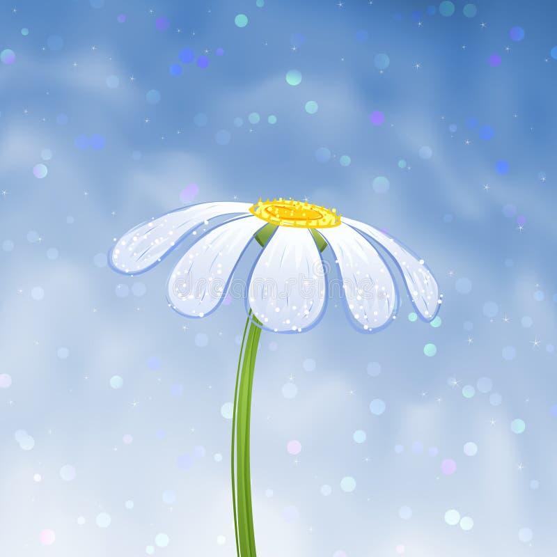 голубая маргаритка бесплатная иллюстрация