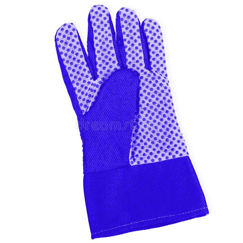 Голубая садовничая перчатка стоковое изображение rf