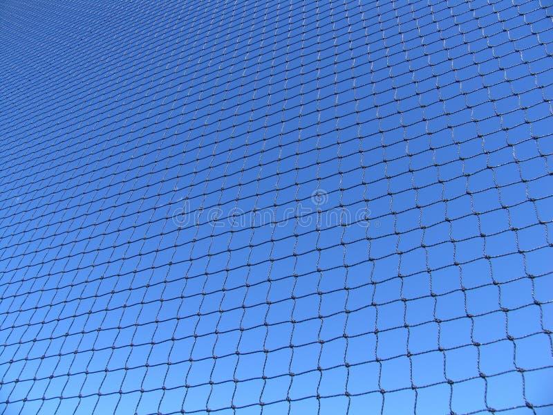 голубая сеть Стоковые Фото