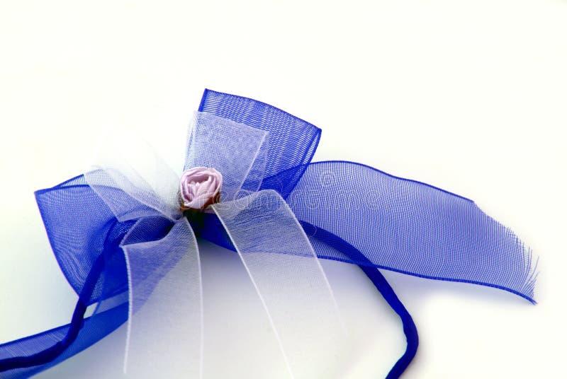 голубая тесемка стоковые изображения