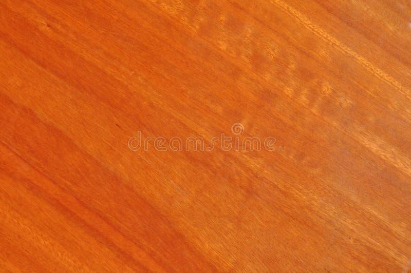 голубая ясная покрынная древесина тимберса камеди зерна стоковое изображение rf