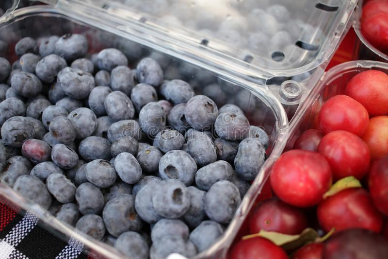 Голубика Текстура предпосылки голубик Полная рамка плодов Витамины и концепция диеты r vegetarian стоковая фотография