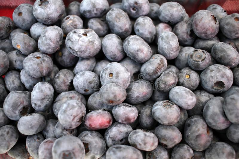 Голубика Текстура предпосылки голубик Полная рамка плодов Витамины и концепция диеты r vegetarian стоковые изображения