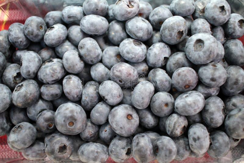 Голубика Текстура предпосылки голубик Полная рамка плодов Витамины и концепция диеты r vegetarian стоковое изображение
