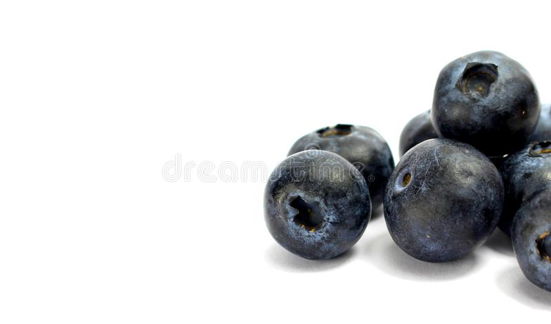 Голубики изолировали предпосылку белизны обоев стоковое фото