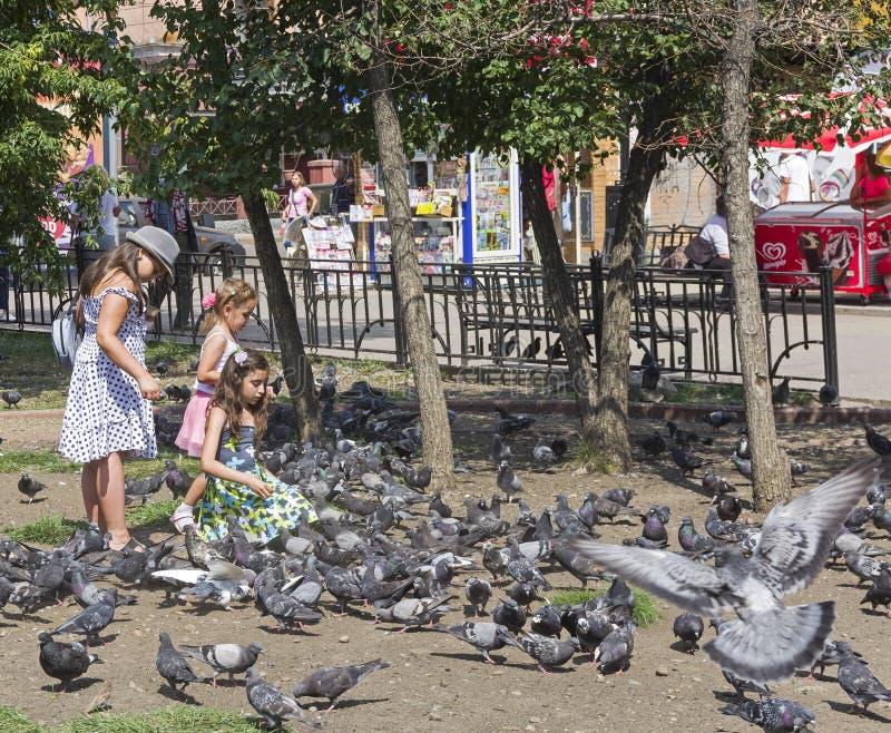 Голуби питания детей в парке города стоковые фотографии rf