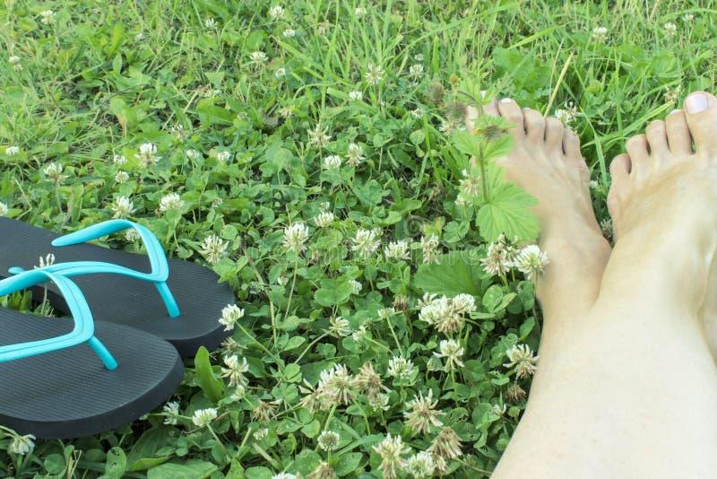 2 голубое и черные кувырки и подрезанные ноги женщины на зеленом луге стоковые изображения rf