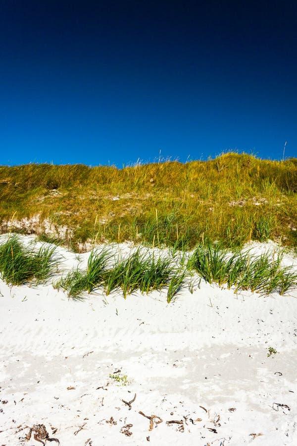 Голубое небо и травянистая белая песчанная дюна Sanday, оркнейские острова, Шотландия стоковые изображения rf