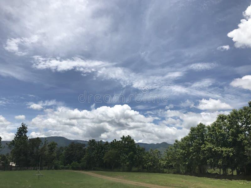 Голубое небо с горой и деревьями стоковое изображение