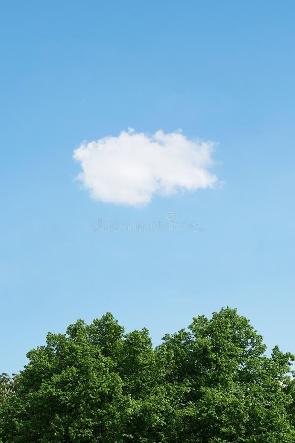 Голубое небо с одиночным облаком стоковая фотография rf