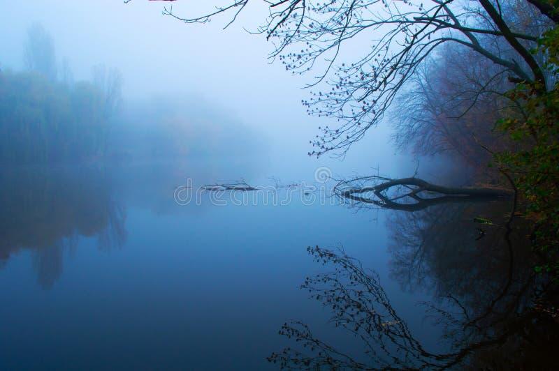 Голубое озеро утром туманно с упавшим деревом в воде стоковые изображения