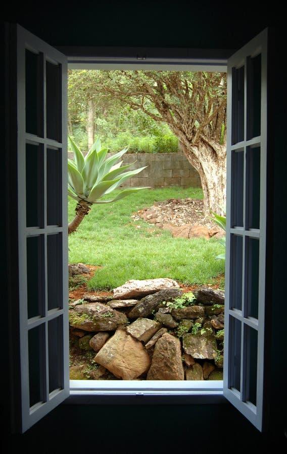 голубое окно стоковое фото