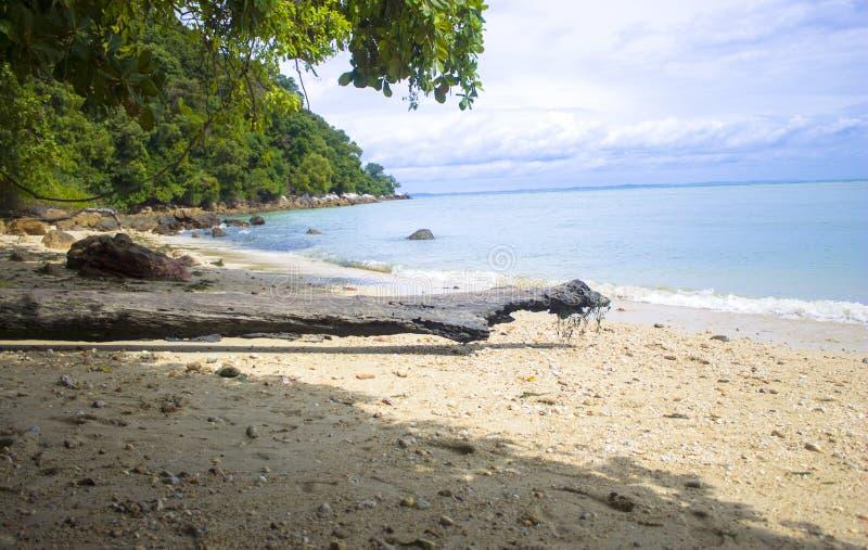 Голубое спокойное море стоковые фото