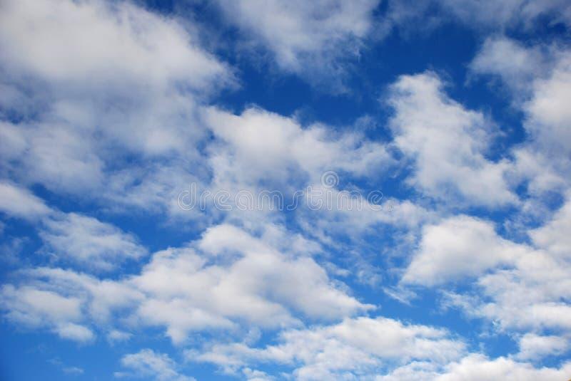 голубое спокойное небо стоковые изображения rf