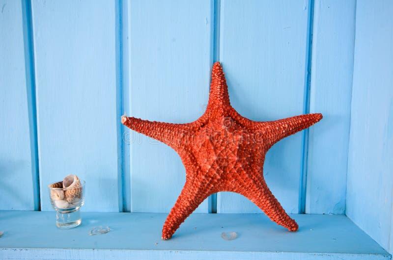 Голубое украшение стены с красными shellfish стоковые фото