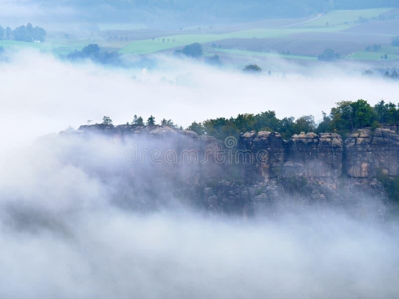 Голубое утро, взгляд над утесом и свежие зеленые деревья к глубокой долине вполне ландшафта весны светлого тумана мечтательного стоковые изображения rf