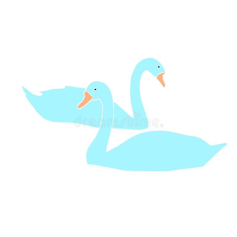 голубой вектор лебедей на белой предпосылке иллюстрация штока
