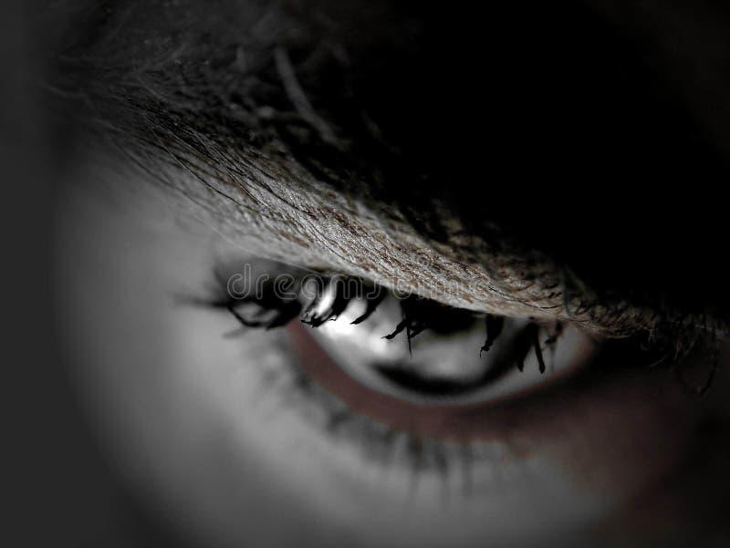 голубой глаз стоковые изображения
