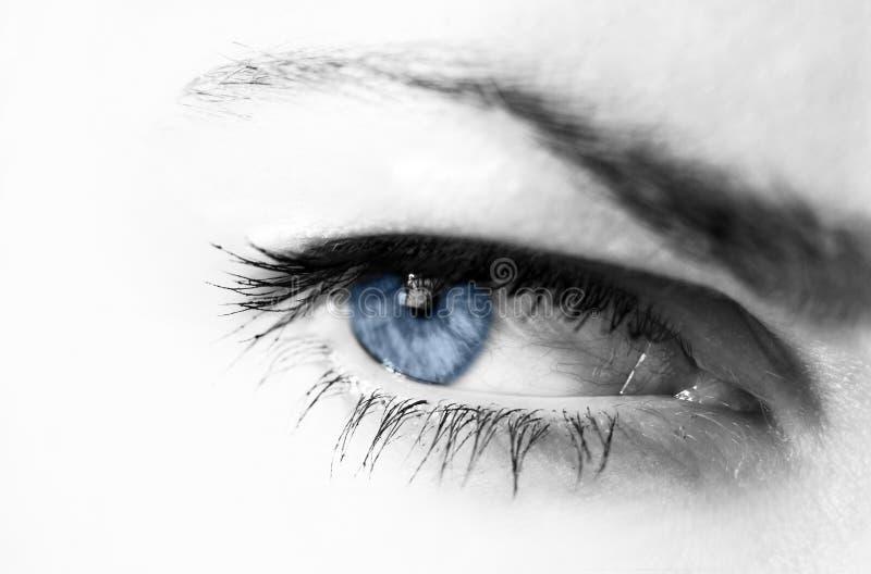 Download голубой глаз стоковое фото. изображение насчитывающей черный - 600500