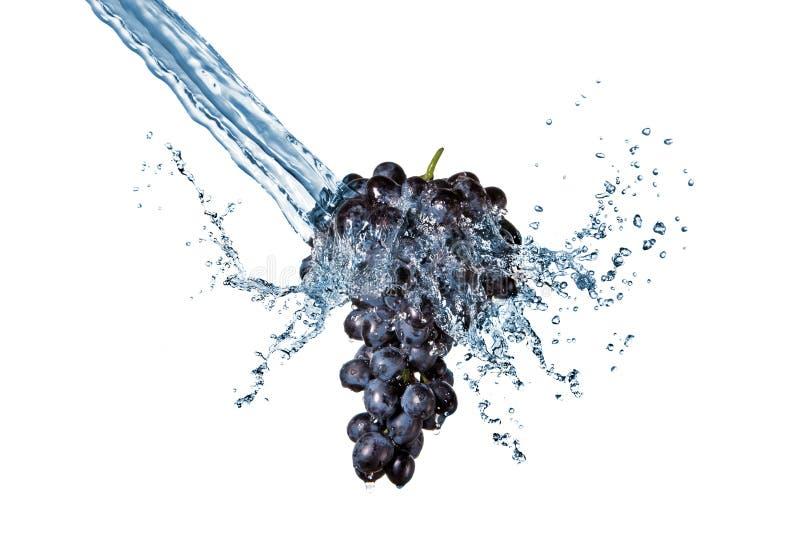 голубой изолированная виноградиной вода выплеска стоковые фотографии rf