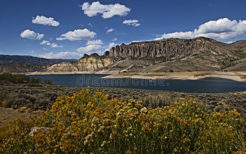 Голубой резервуар мезы стоковая фотография rf
