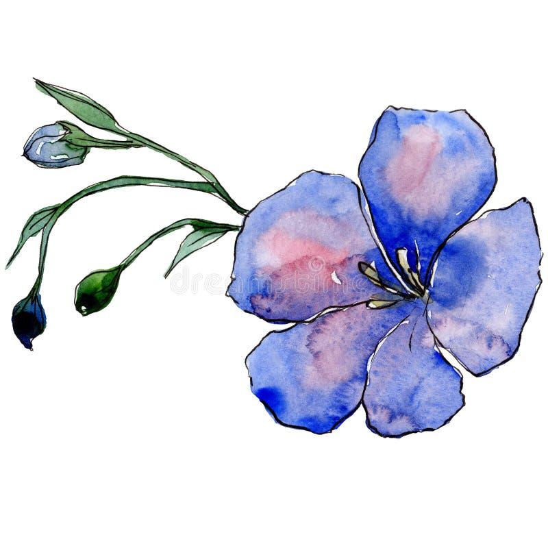 Голубой цветок льна с зелеными листьями и бутонами Изолированный элемент иллюстрации льна акварель конструкции основания предпосы иллюстрация вектора