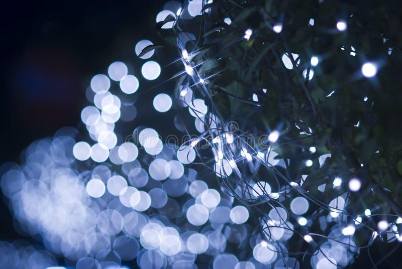 голубой defocused свет влияния стоковые фото