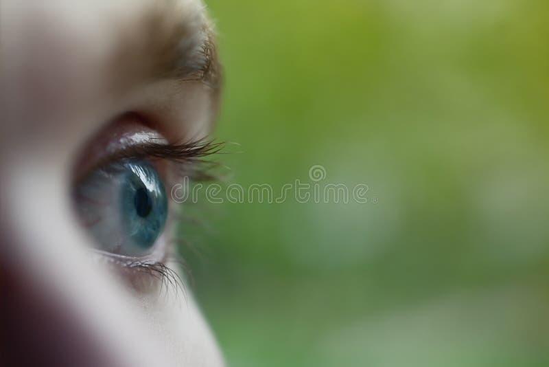 голубые глазы мыжские стоковая фотография rf