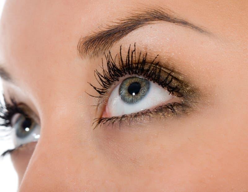Голубые глазы на белизне Стоковая Фотография