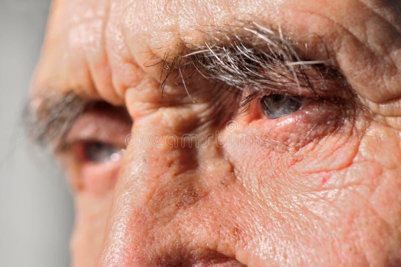 голубые глазы стоковое изображение