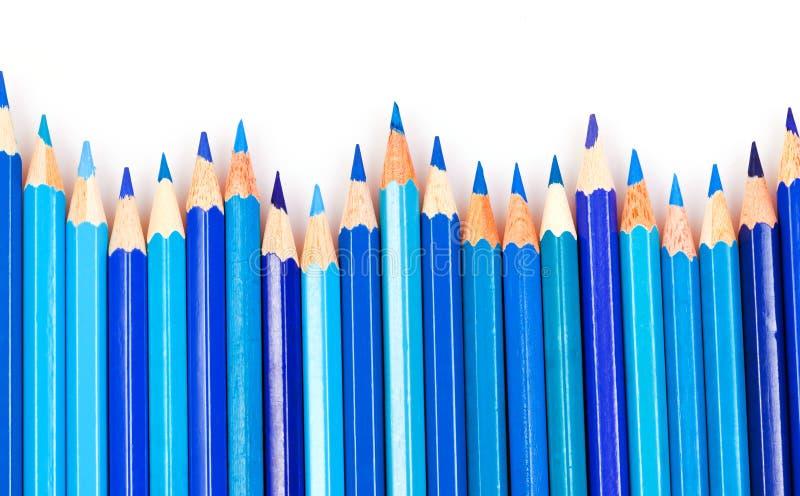 голубые карандаши стоковые фотографии rf