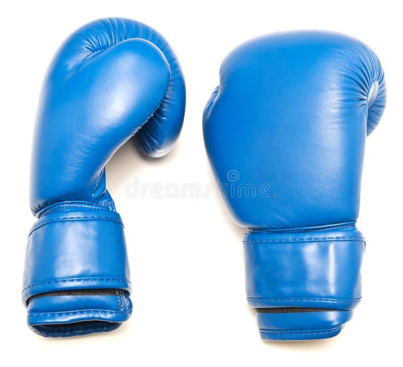 Голубые кладя в коробку перчатки стоковая фотография rf