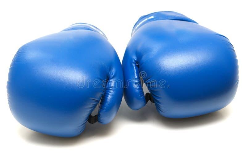 Голубые кладя в коробку перчатки стоковые фото