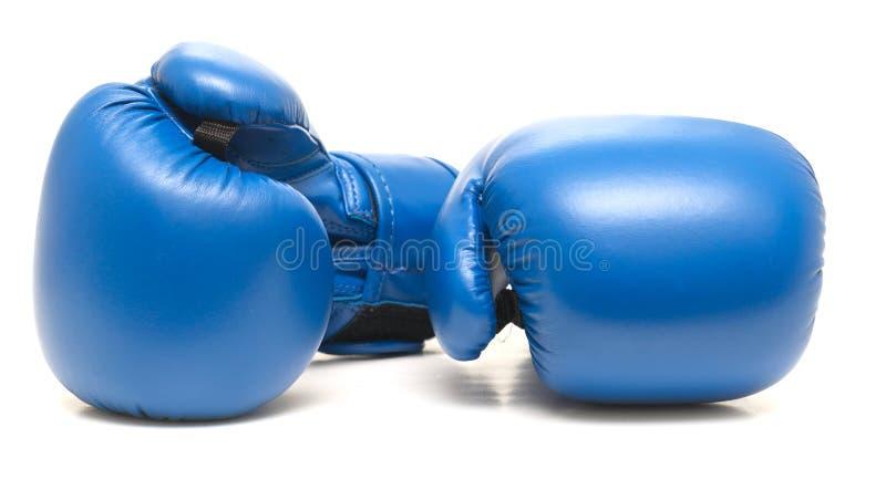 Голубые кладя в коробку перчатки стоковая фотография