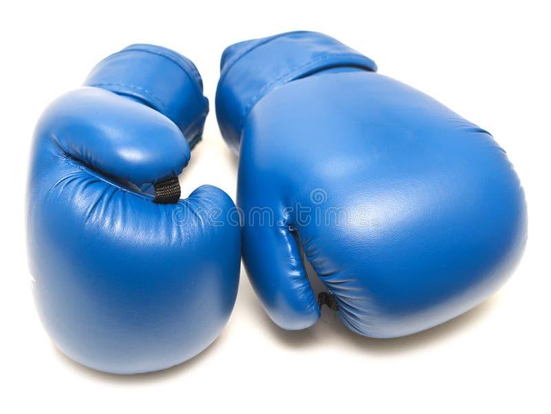 Голубые кладя в коробку перчатки стоковые изображения