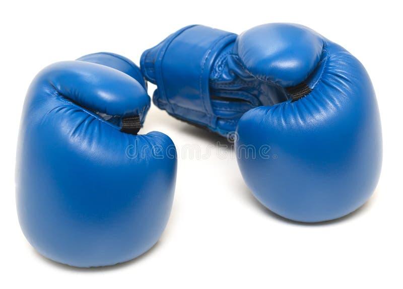 Голубые кладя в коробку перчатки стоковое изображение rf