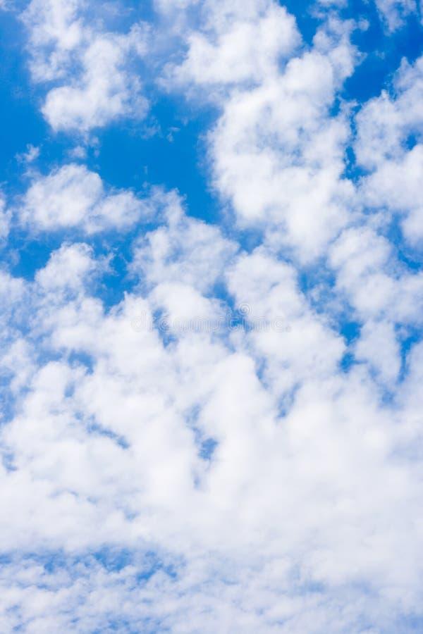 голубые небеса стоковая фотография rf