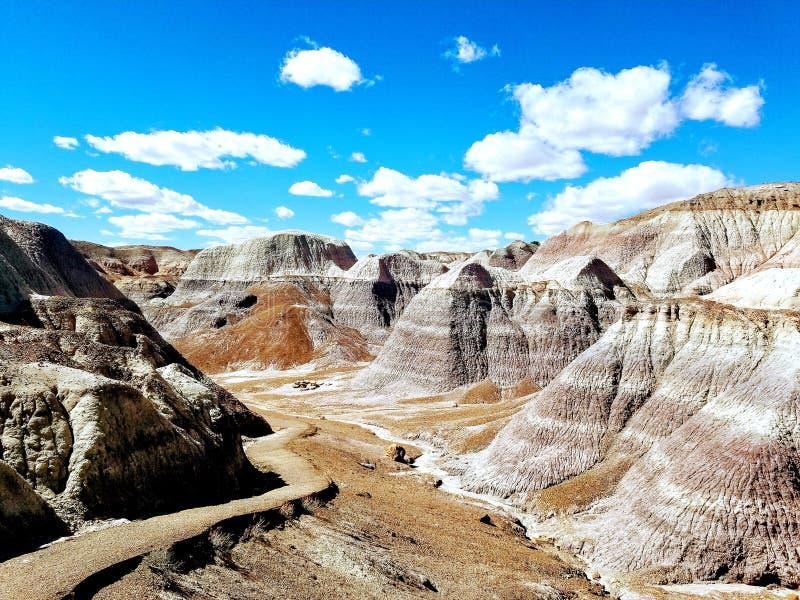 Голубые неплодородные почвы Аризона стоковые фото