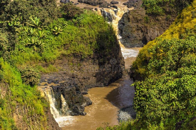 Голубые падения Нила, Эфиопия стоковая фотография