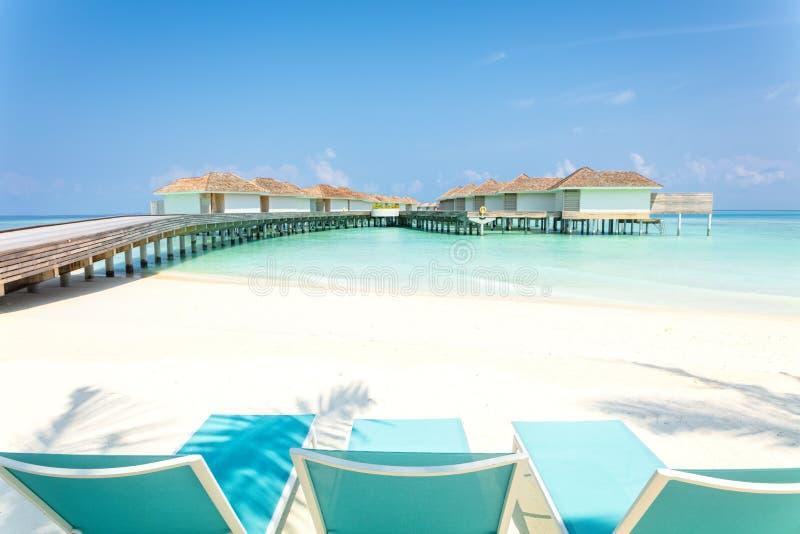 Голубые шезлонги на белом песке с деревянной молой и тропическими виллами в Мальдивах на предпосылке, тропической концепции празд стоковое изображение