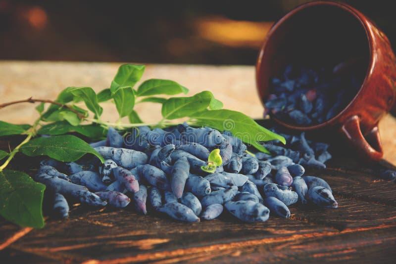Голубые ягоды каприфолия на темной доске рядом с коричневой чашкой глины стоковые изображения rf
