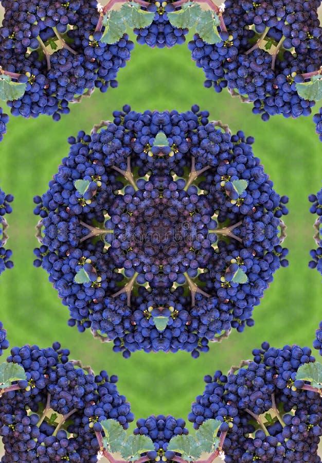 голубые winegrapes мандала иллюстрация штока