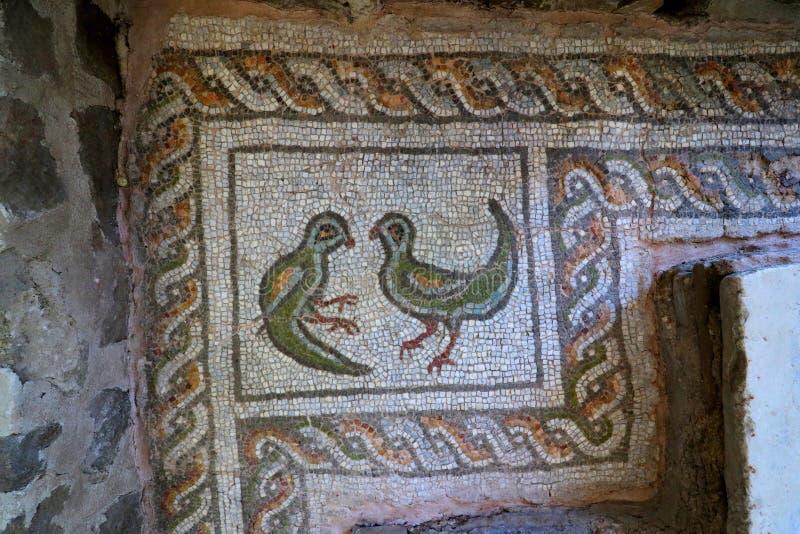 Голубь: символ святого духа который появился на крещение Иисуса в реке Иордан стоковые фотографии rf