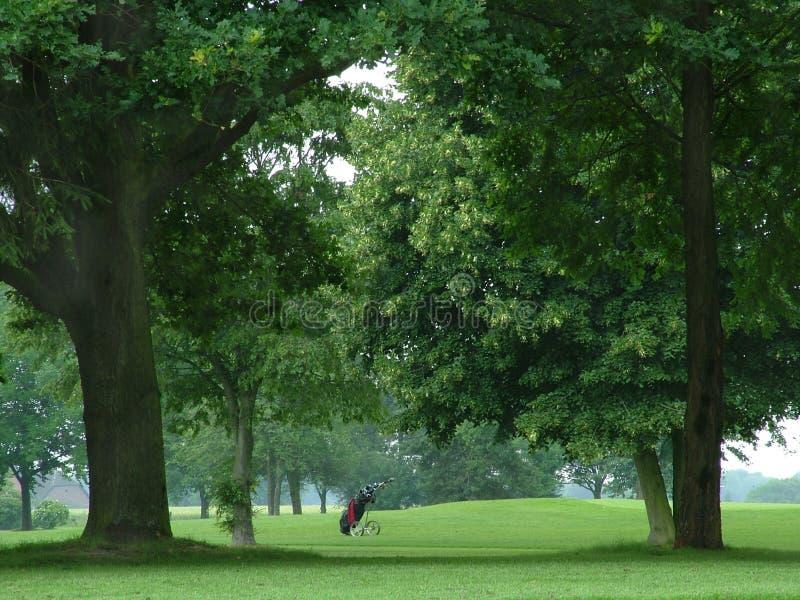 гольф мешка солитарный стоковые фото